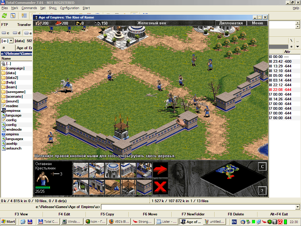 aoe1windowed